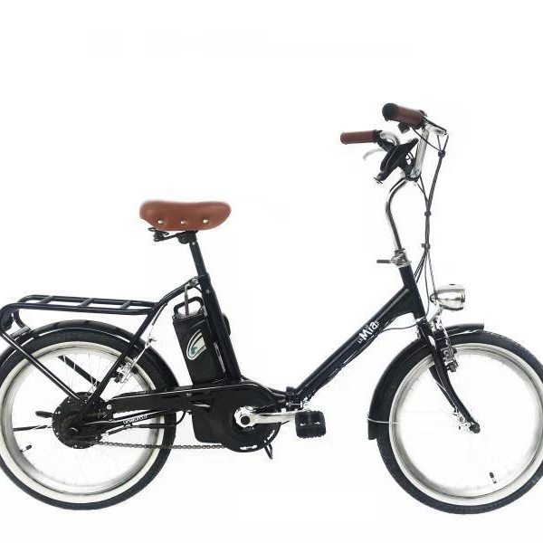2018 hot sell mini <strong>folding</strong> e bike 20inch electric bike steel frame 6AH low power electric bike