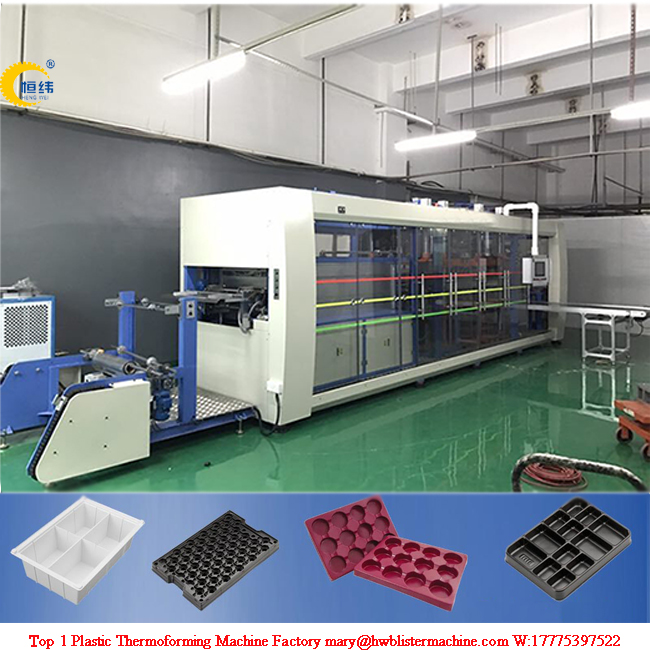 Plastic Disposable PS, PP Bowl Cup Tray Thermoforming Machine
