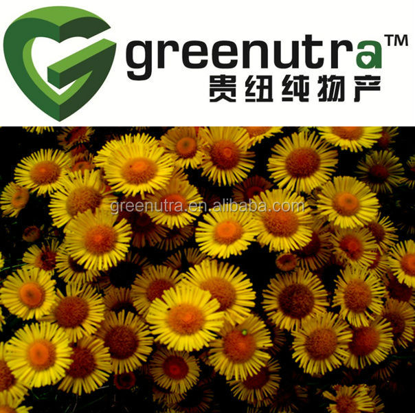 Field Bindweed extract/Convolvulus Arvensis Extract