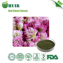 2016 hot sale free sample pure natural Red Clover extract