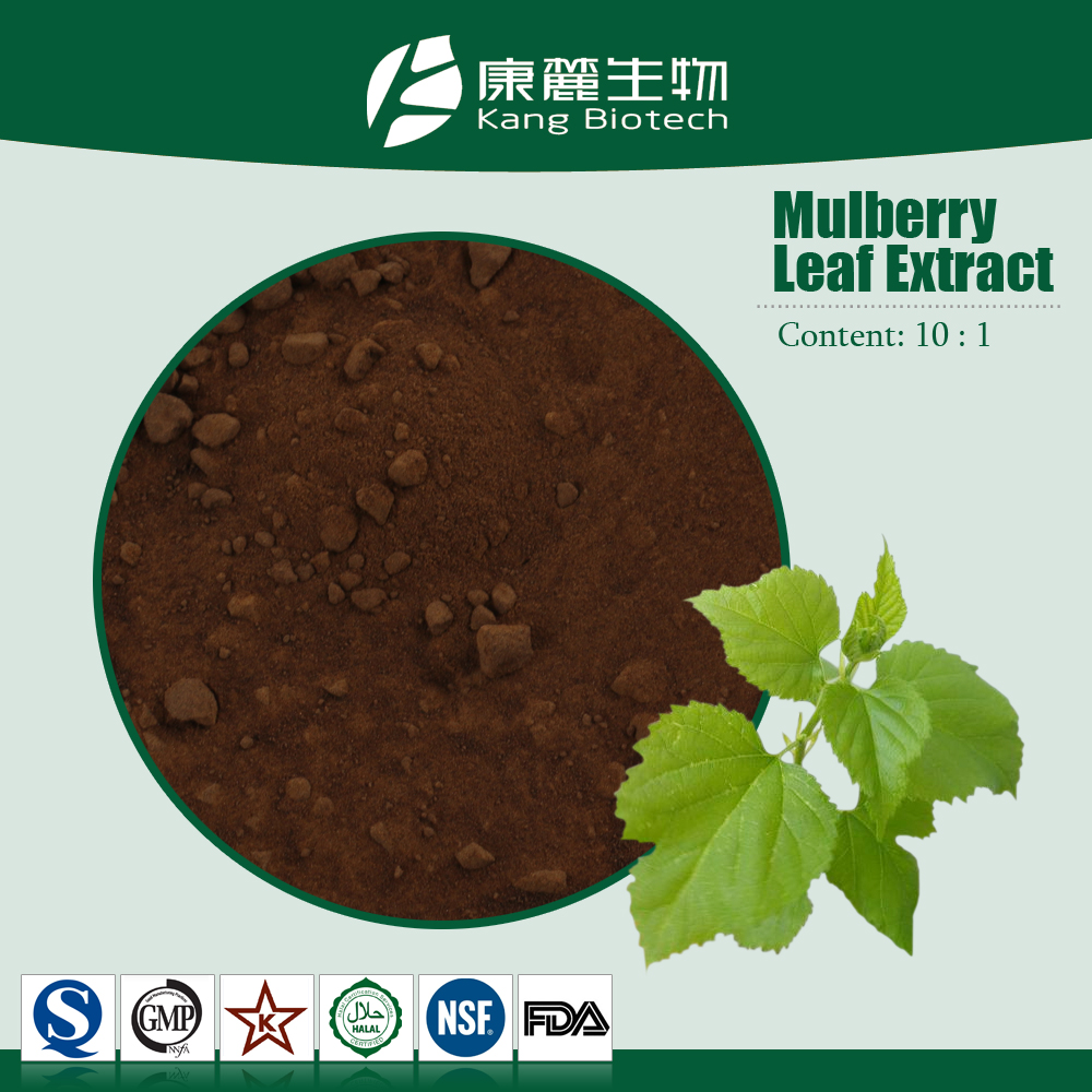 Organic plant extract 1-dnj 1%, 5% Powder White Mulberry Leaf Extract