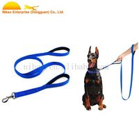 Double Neoprene Handle Nylon Reflective Dog