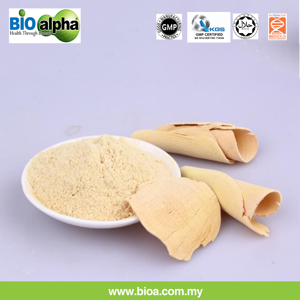 Wholesale Malaysia Best Quality Tongkat Ali Extract Powder