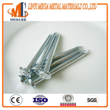 K word Sharp Diamond Point zinc galvanized stainless steel concrete nail from china factory