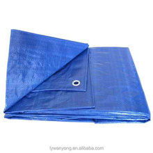 Double color blue general purpose tarpaulin with different size