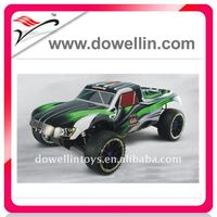 1/5th AWD Scale RC Gasoline Rally Car