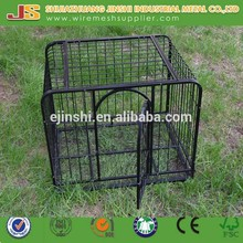 Powder Coating Chain link Weld Mesh dog kennels