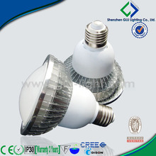 China manufacturer 2014 new modern led light dimmable led par38 bulb