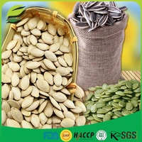 Chinese pumpkin seed and kernels snow white pumpkin seeds shine skin punpkin seeds and kernels
