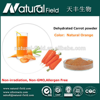 OEM Welcome sell spray dried wild carrot seed extract powder