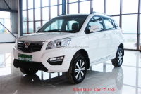 Chinese hot sale cheapest New SUV 50km/h 5 seater pure battery electric car made in China