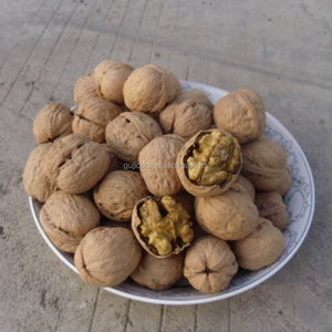Factory Price Walnut and Walnut Kernel