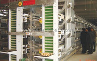 H Type Multi-tier Hot Galvanized Automatic Chicken Cage
