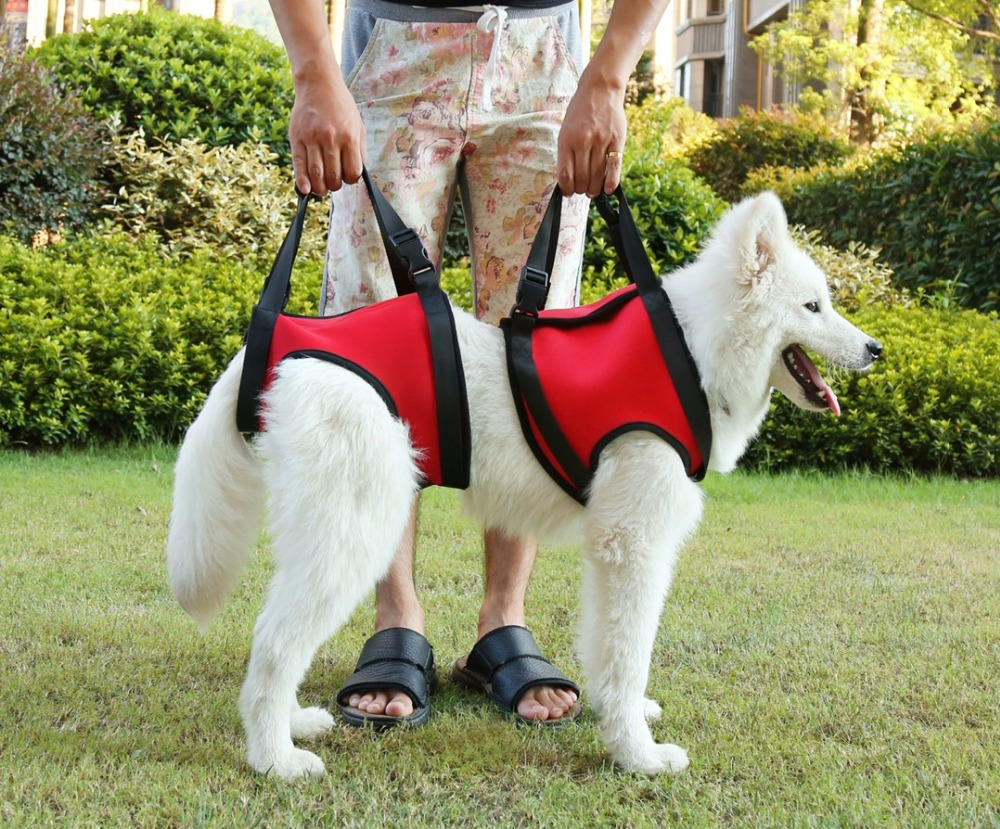 Large Dog Front And Rear Lift Harness