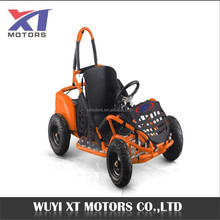 2018 WUYI XT MOTORS 1000W electric kids Go Kart /Buggy for sale