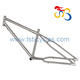 Hot sale titanium fat bike fat tire bike frame TSB-ZJS0901