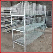 Top Promotion Rabbit Farming Products in India and In Kenya