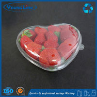 thermoforming plastic electronic tray