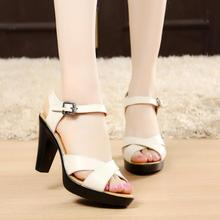 zm54245a Fashion Lady Stylish Summer Party Wear Sex High Heel Women Sandal Design Made in China