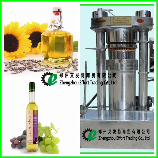 Low price sunflower seeds oil press/cold oil press/small hydraulic oil press machine