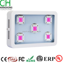 Full spectrum housing green house plant lamp horticulture plant lamp 1200w cob led grow light