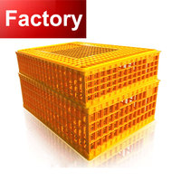 Automatic egg collection equipment A type small animal transport cage