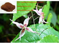 High quality 100% natural herbal epimedium extract powder supplier