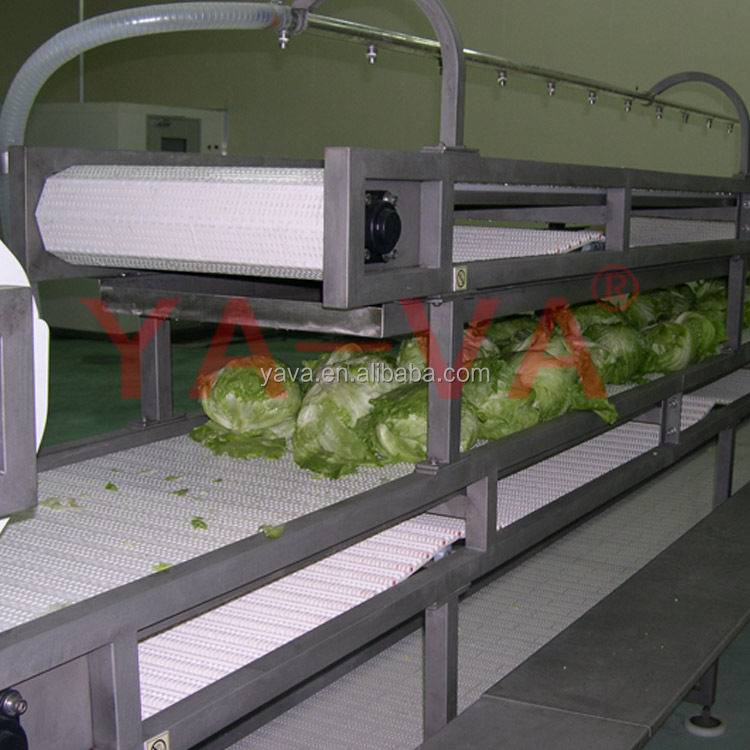 Modular belt conveyor vegetable and fruit conveyor belting