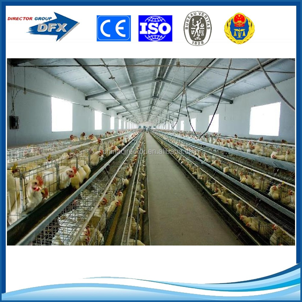 light steel structure chicken house broiler poultry shed construction building