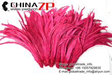 NO.1 Supplier CHINAZP Wholesale Wonderful Quality Hot Pink Fully Dyed Roosters Chicken Feathers