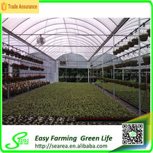 Galvanized steel structure film cover used commercial greenhouses