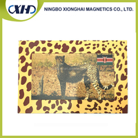 China new design popular custom soft pvc 3D magnetic photo frame