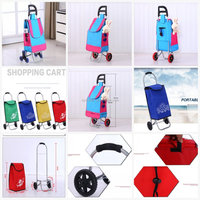 Alibaba supplier multi-function two wheels foldable shopping trolley bag