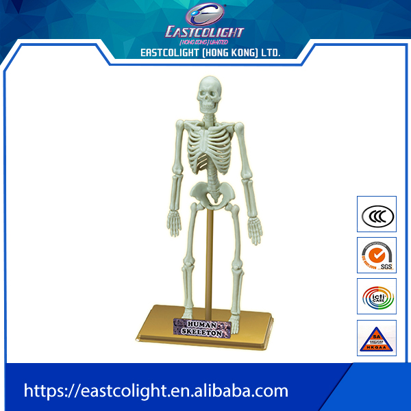 Plastic scary halloween for skeleton model mini toys