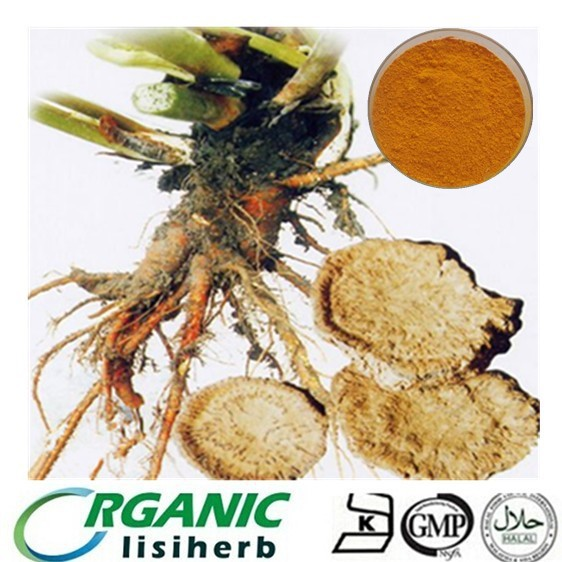 Chinese traditional herbs Rhubarb Extract Emodin / Rhein / physcion for sale