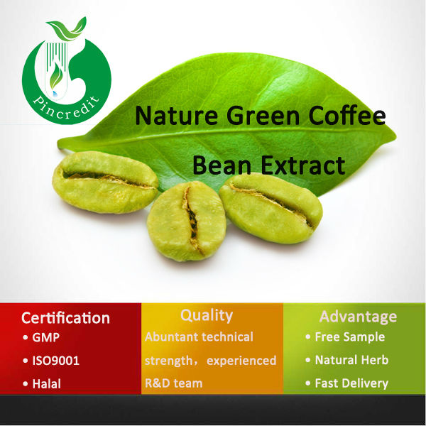 High Quality Pure Green Coffee Bean Extract