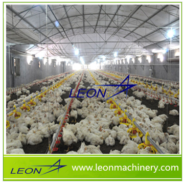 LEON automatic chicken feeder/chicken feeding system for poultry equipment /poultry