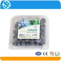 Hot sale customized small hinged plastic containers for blueberry