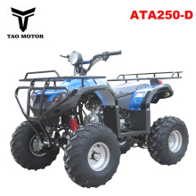 Quad ATV 250cc ATA250-D with EPA CE