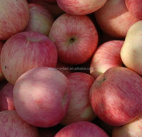 The New Harvest Crops Fresh apple Red Fuji