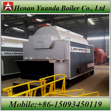 DZL Coal Fired Steam Boiler 10 Ton for Petrochemical