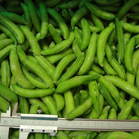 IQF frozen fresh high quality suger snap pea
