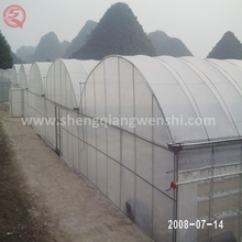 Hot sale arch-type greenhouse plastic film in rolls
