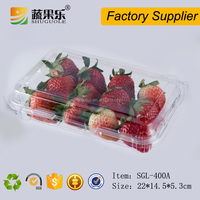 Disposable Customized Fruit Packing Boxes