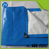 9x9 Custom waterproof PE tarpaulin covers