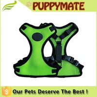 Factory supply high quality 4 colours protective dog harness and leasg for sale