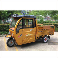 1000W 60V best cabin electric cargo tricycle for carrying