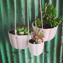 custom plastic shallow wall mounted hanging flower pots with hook