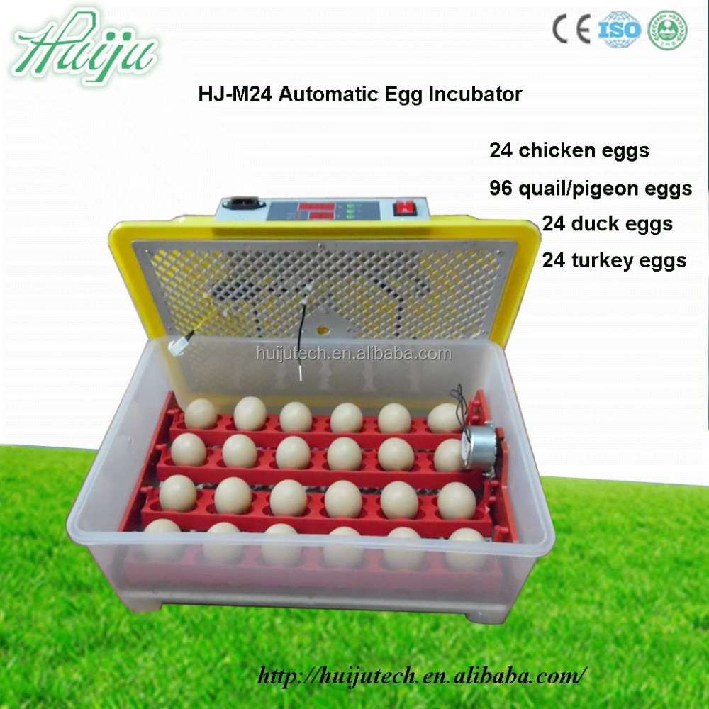 Hot!!!full automatic 24 eggs mini incubator/chicken equipment as gift to child HJ-M12