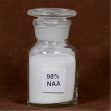 1-Naphthaleneacetic acid (NAA) for Plant growth regulator 98% TC